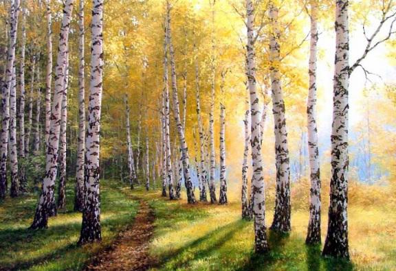 лес-березовый-осень