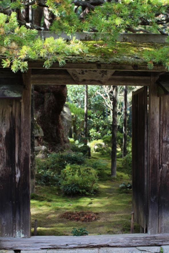 Хосен-ин сад в Японии