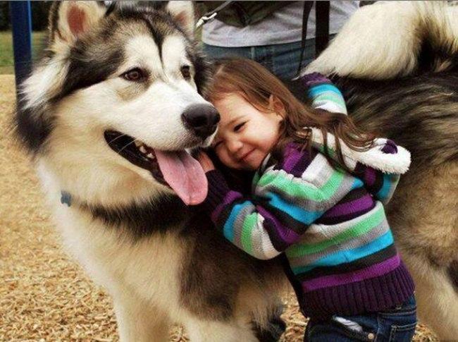 Дети и домашние животные (11 фото)